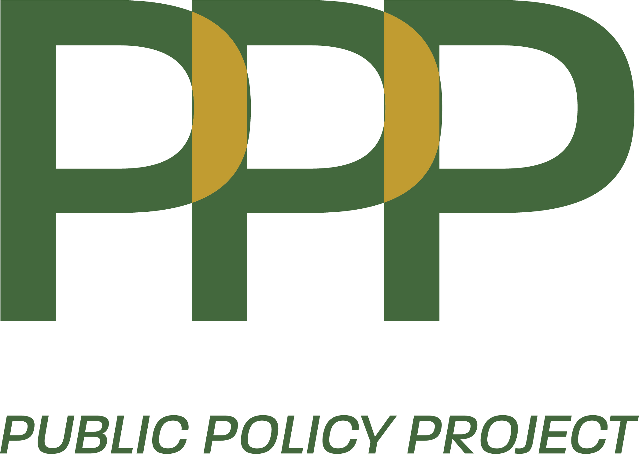 public policy project online